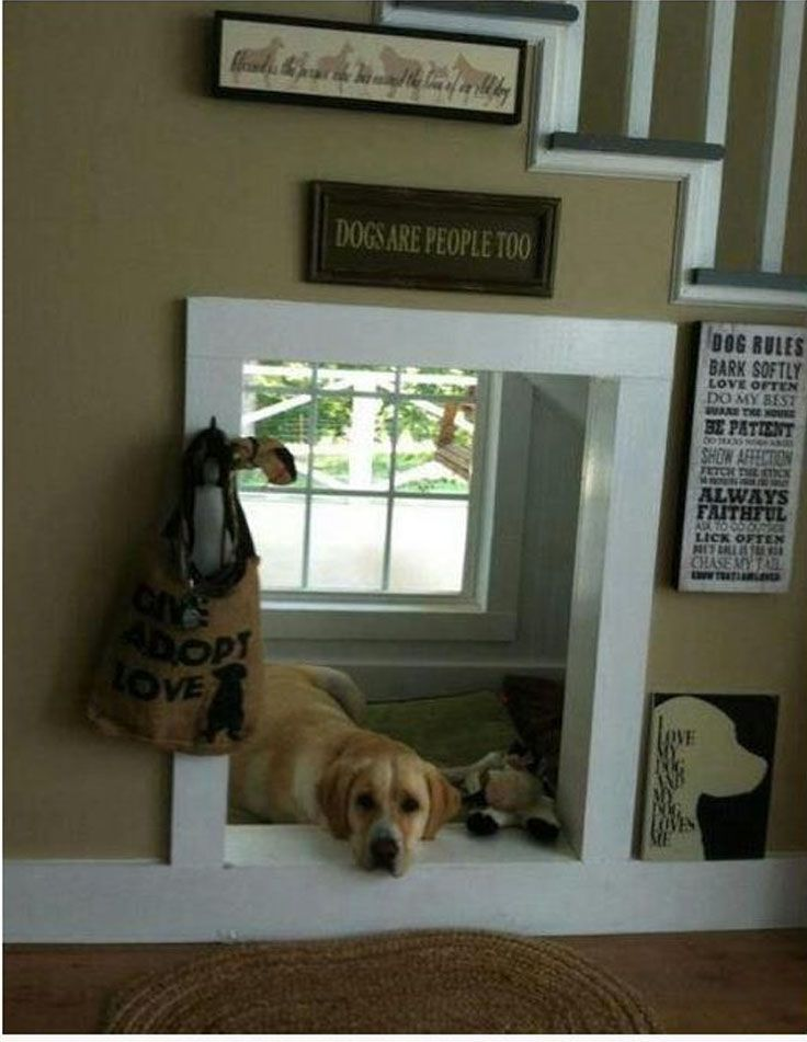 Top 10 Interesting Design Ideas For Pet Spaces Top Inspired Indoor Dog House Pet Spaces Dog Rooms