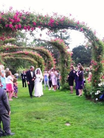 Imagine Being Escorted Up The Aisle Of Roses To Have Your Rose Garden Wedding Amid Blooming Flowers Wedding Ceremony Location Garden Wedding Ceremony Location