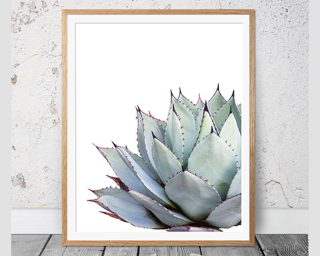 Cactus Print Succulent Print Cacti Print Cactus Wall Decor Botanical Print Cactus Art Coastal