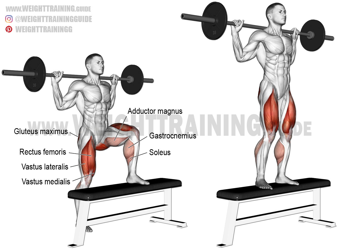 Barbell Step Up Exercise Instructions And Video Weight Training Guide Step Up Workout Weight Training Exercise