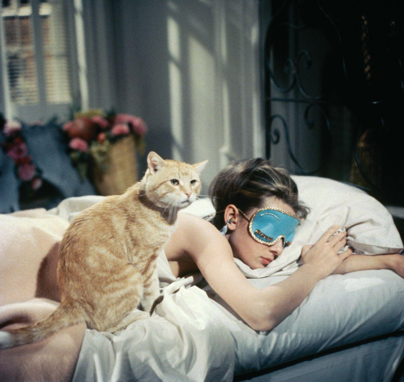 Catnip Is My Secret for Finally Getting Eight Hours of Sleep | Audrey  hepburn, Hepburn, Audrey
