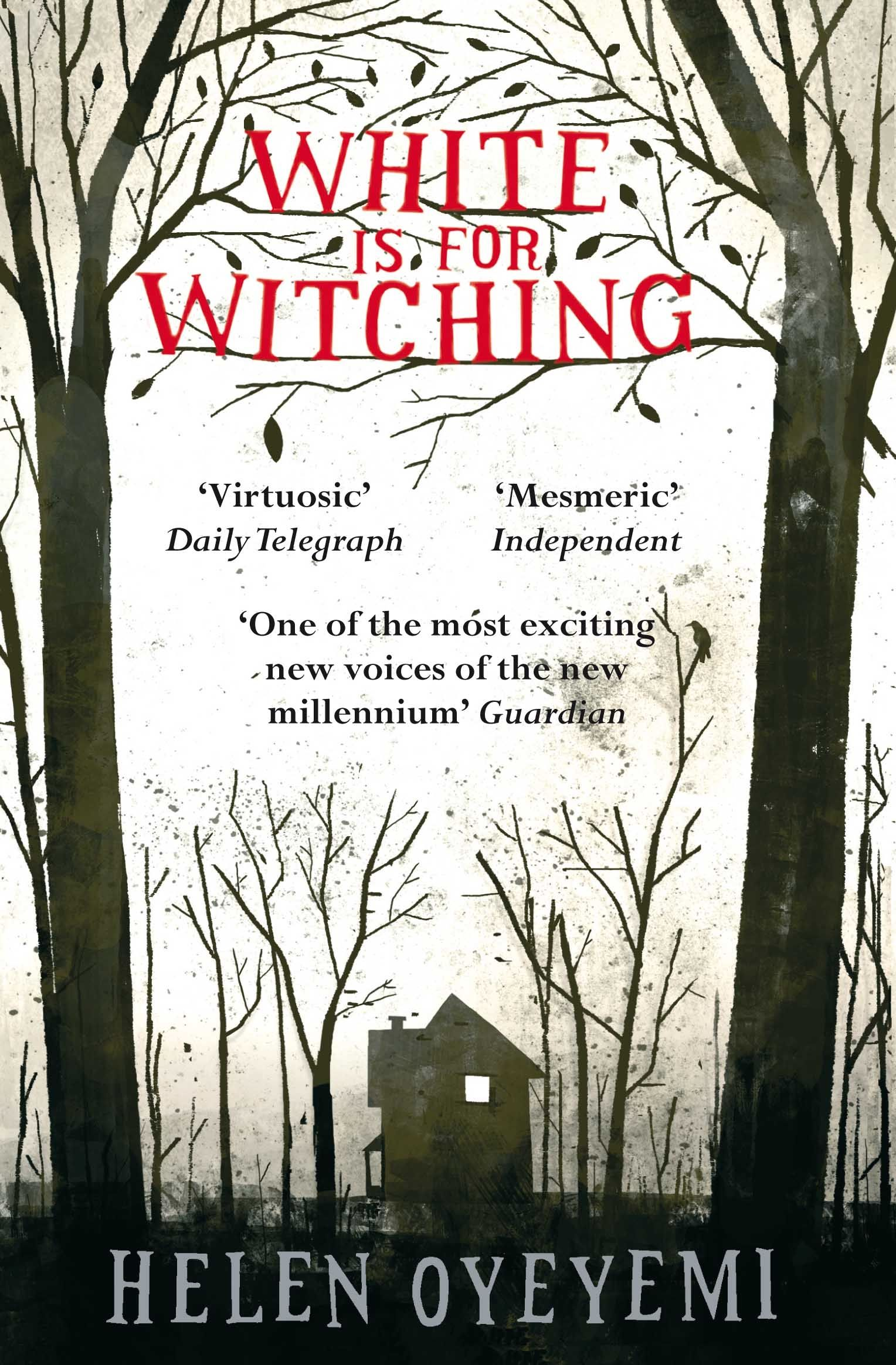 Image result for white is for witching helen oyeyemi