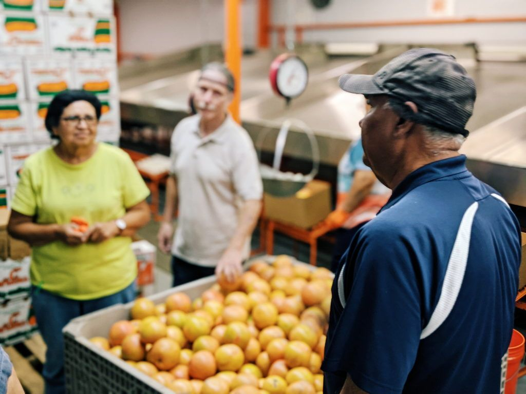 A Decade After Food Safety Modernization Act Fsma Additional Rules Still Rolling Out 020620 In 2020 Food System Food Policy Regional Food