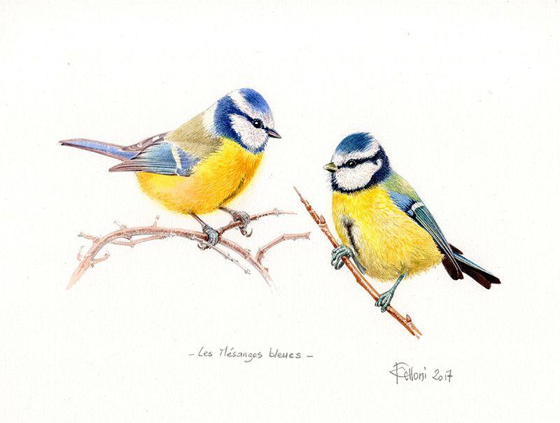 Des Oiseaux Illustration D Oiseaux Peinture De Souris Et Oiseaux