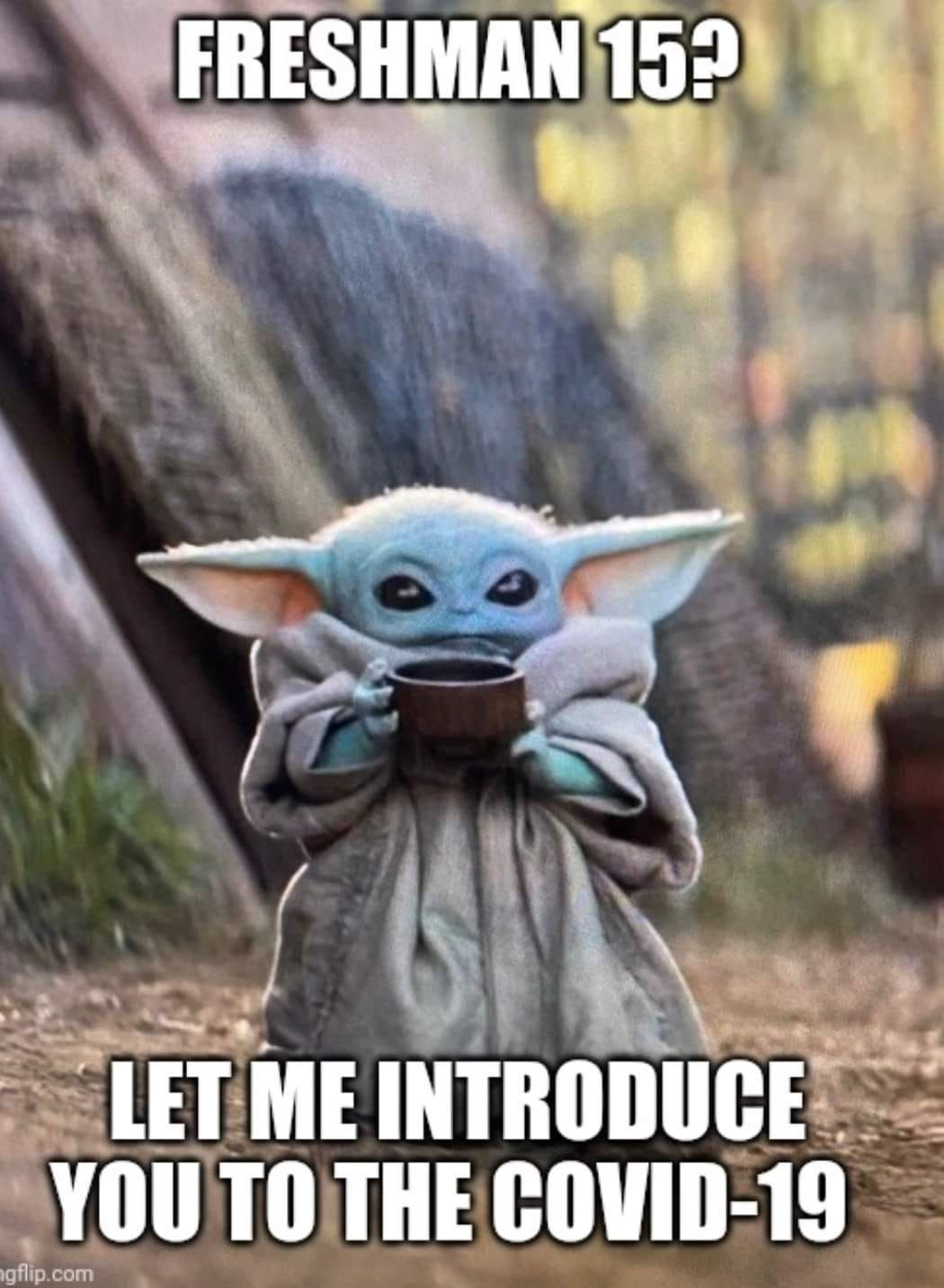 Baby Yoda Yoda Funny Yoda Meme Star Wars Humor