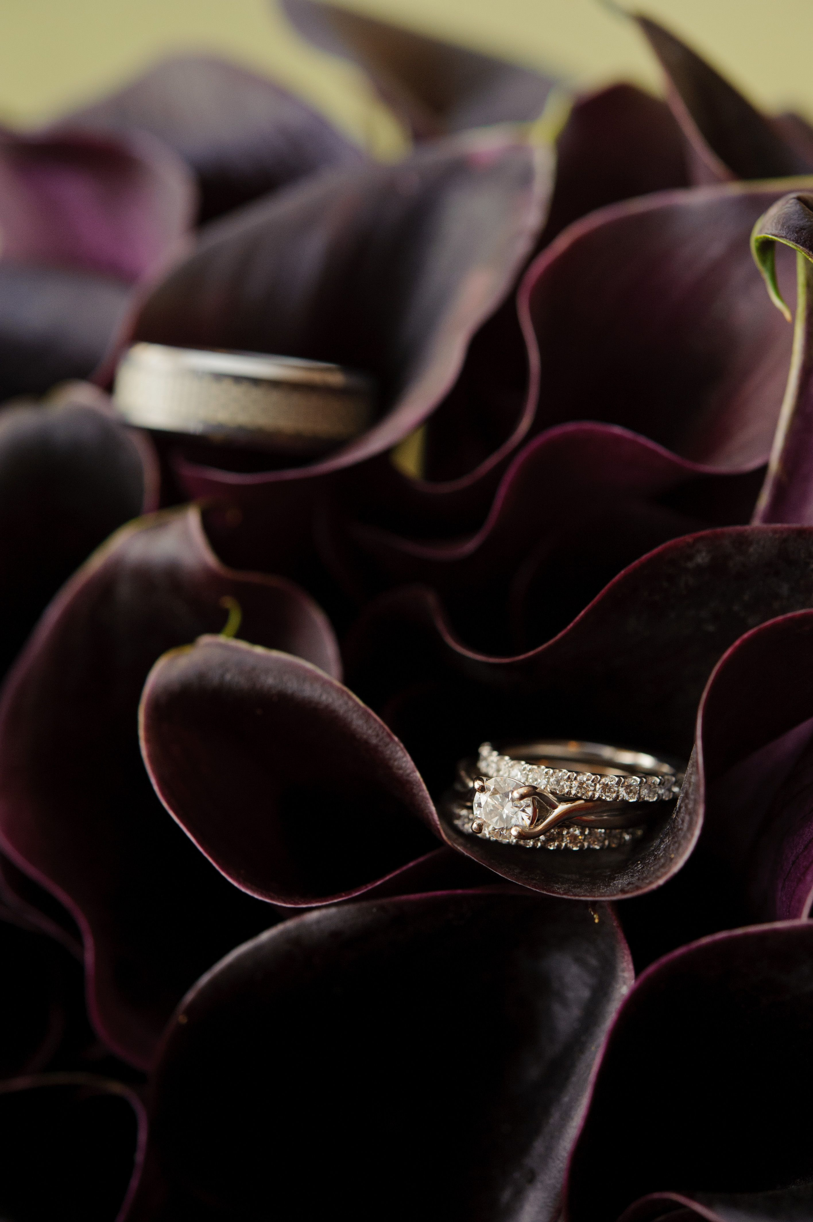 Wedding Bands! With my Boquet :D