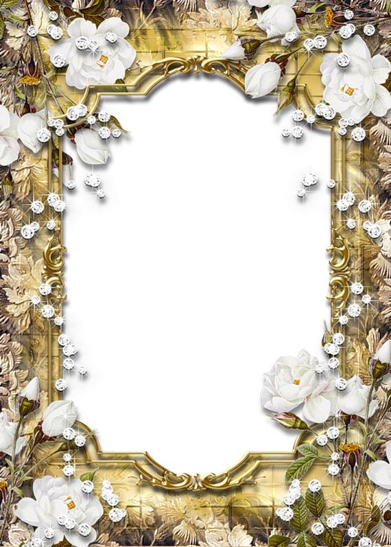 Gold PNG Frame With Diamonds And Roses
