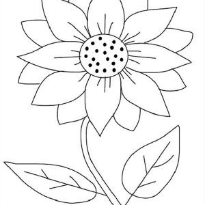 sunflower Coloring Sheets Bing images Punch needle Pinterest