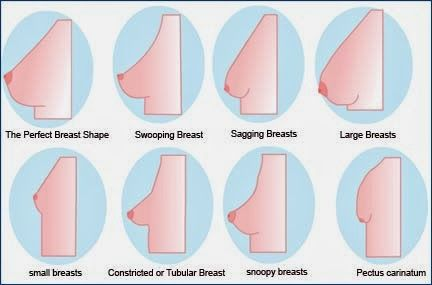 bd91401b1c8 Bra Guide  How to identify your breast shape to find the perfect fitting bra