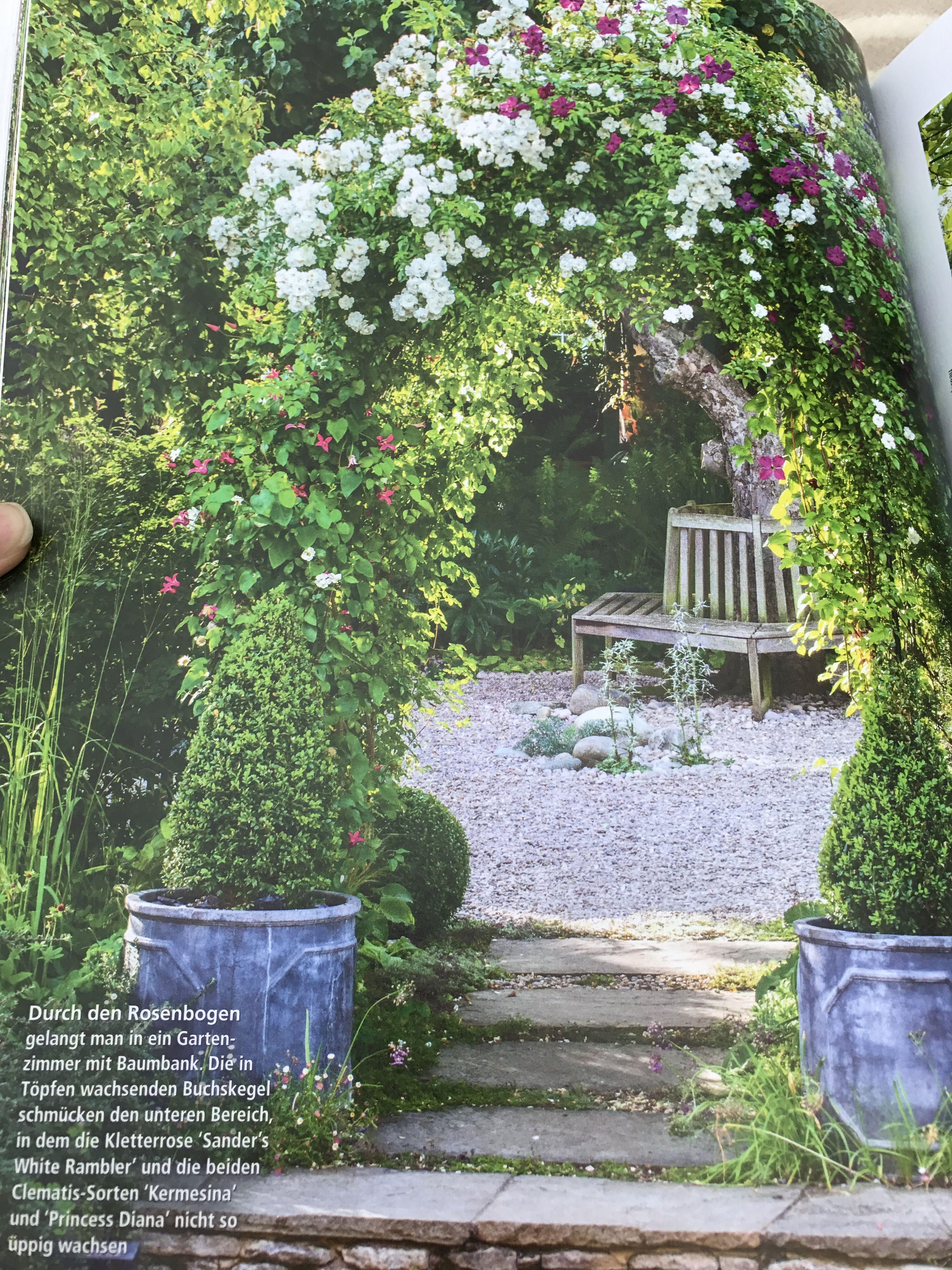 Sichtschutz Durch Bewachsenen Torbogen Vom Trittplattenweg Zur Terrasse Hin Garten Gartengestaltung Torbogen