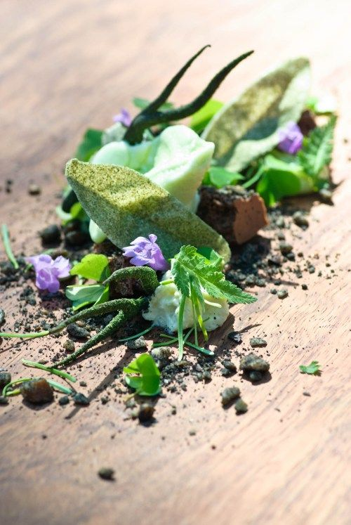 From Mielcke & Hurtigkarl, Denmark. 'Forest Floor'. Includes beguiling elements such as beech leaf sorbet, fir oil, woodruff mousse and birch oil. They made the list of best emerging chefs in 2010 - I'd say they have now fully emerged and have blossomed beautifully