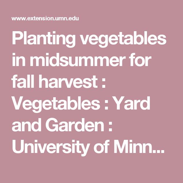 garden ideas - Vegetable Garden Ideas Minnesota
