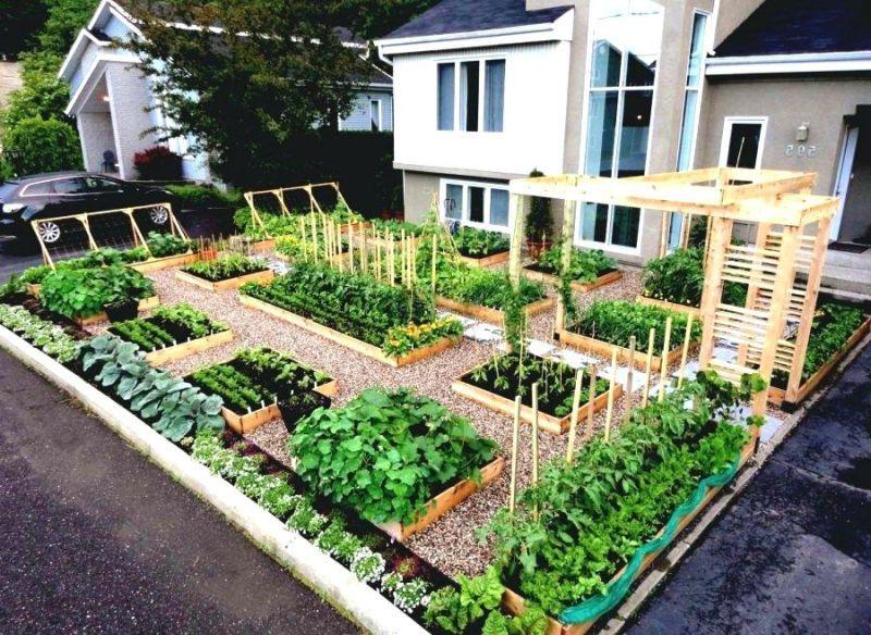 24 Pallet Garden Ideas For Impressive Garden Areas Front Yard Landscaping Design Small House Landscaping Home Vegetable Garden Design