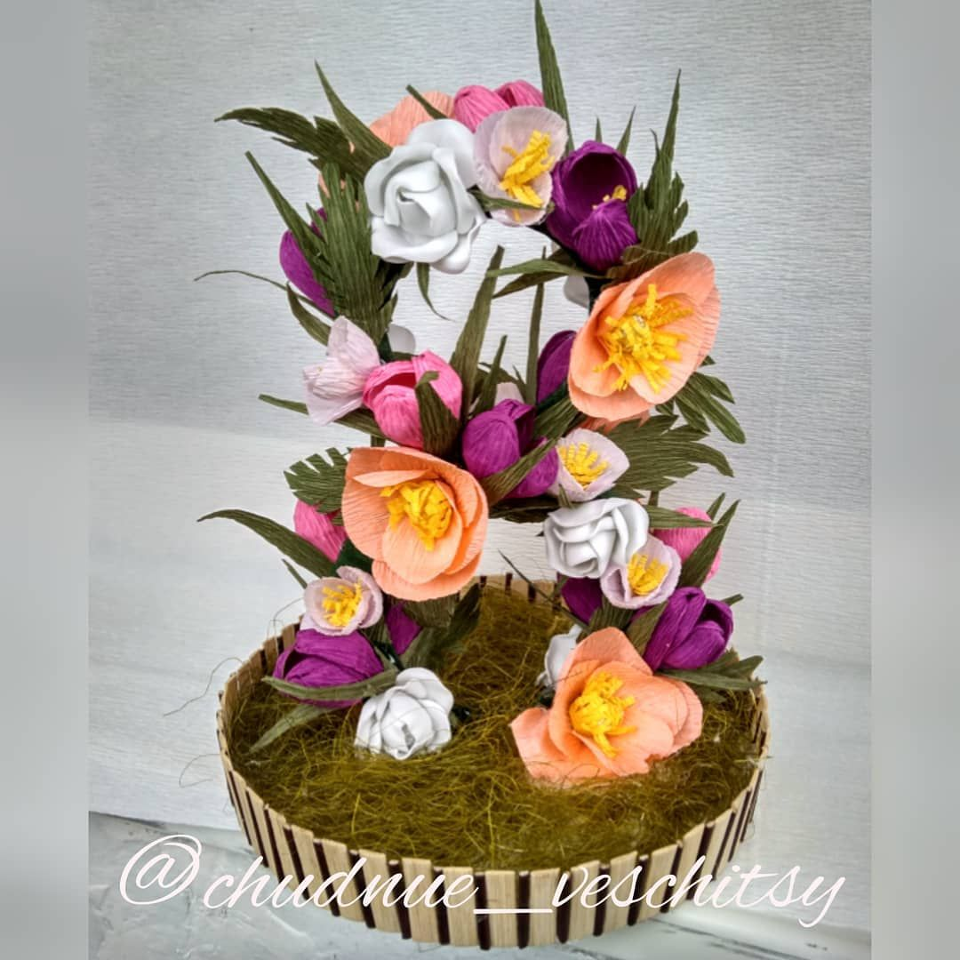 Лучшие комнатные цветы. Названия красивых цветов и их.