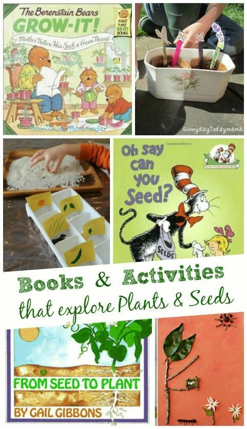 Books Activities That Explore Plants And Seeds Stem Projects Seeds And Planting