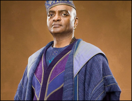 Order Of The Phoenix Kingsley Shacklebolt Played By George Harris Is A Senior Auror Who Acts As Informer For The Order Within The Ministry Of Magic Kingsley I