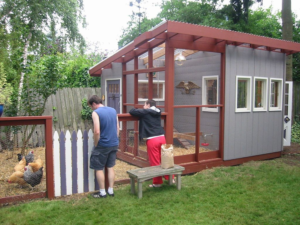 Images of chicken houses chicken coop plans build your for How to build a chicken hutch