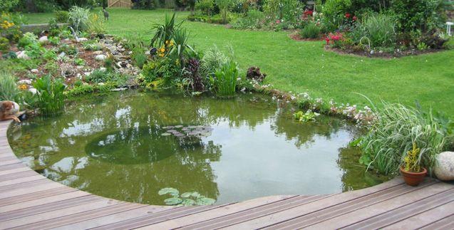 bassin de jardin terrasse Bassin polyester avec terrasse bois - terrasse bois avec bassin
