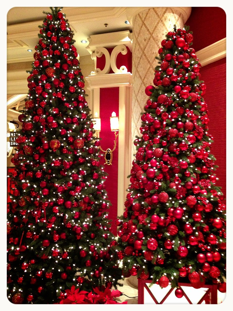 Las Vegas Hotel Christmas Trees Christmas Trees Outside The Buffet