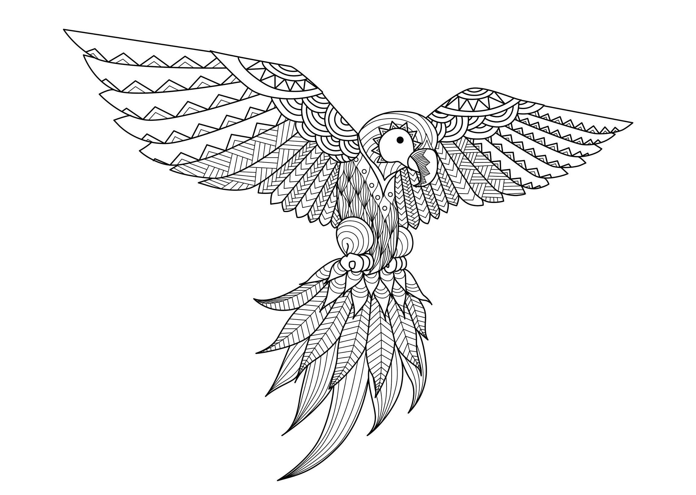 Free coloring page coloring-zentangle-parrot-by-bimdeedee