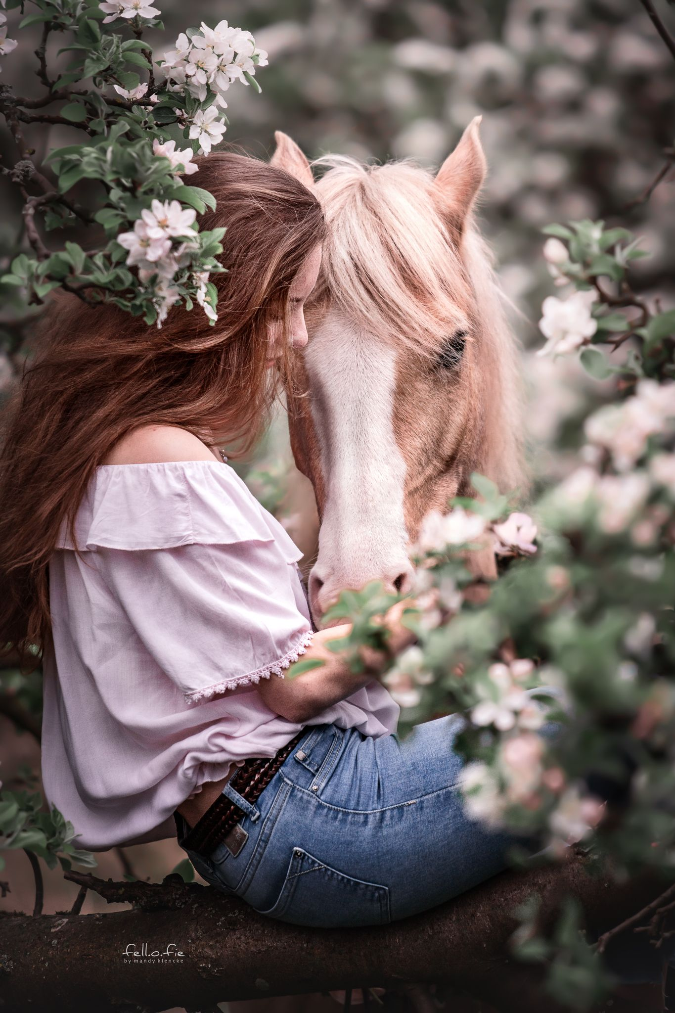 Photo of Cuddly pictures with horse