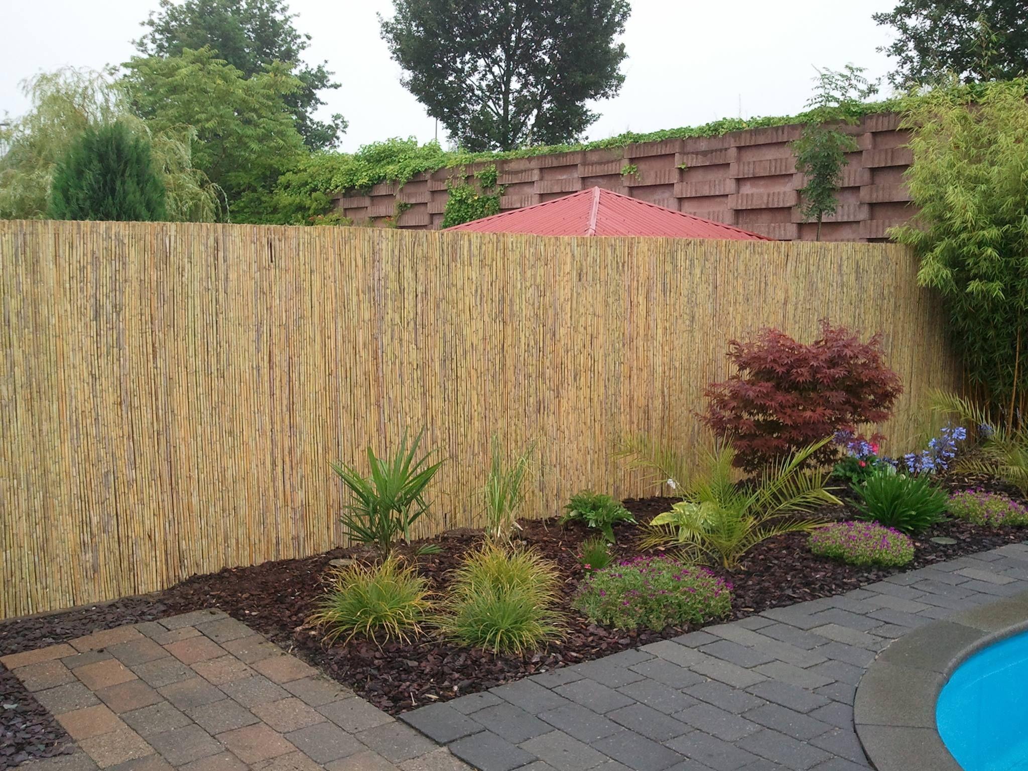 Sichtschutzmatten Sichtschutz Bambus Bambusmatte exclusiv