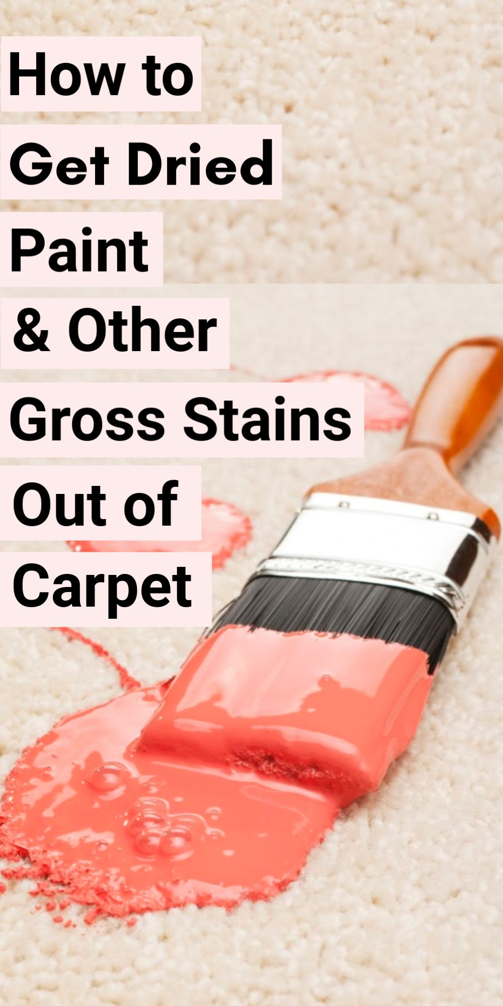 How To Get Dried Paint Out Of Carpet And Other Crazy Stains Stain Remover Carpet How To Clean Carpet Painting Carpet
