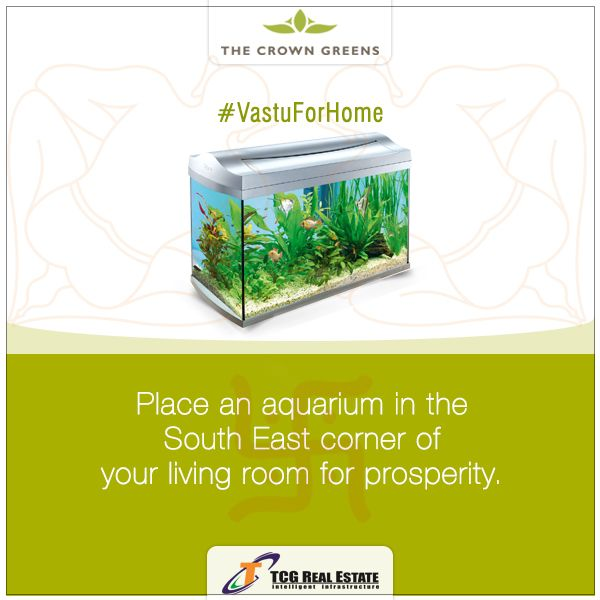 According To Vastu For Prosperity South East Corner Of Your Living Room Is The Best Place A Fish Aquarium Also Drives Away Vastu House Dragon Fish Fish Tank