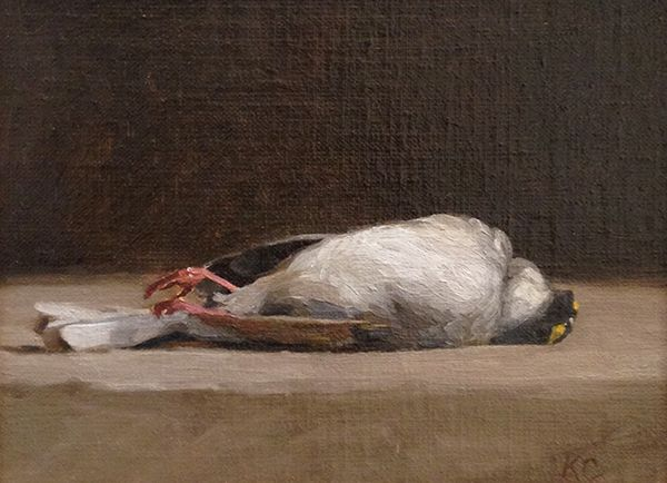 Kelly Carmody, 'White-throated Sparrow 3', 6 x 8, Oil on Linen