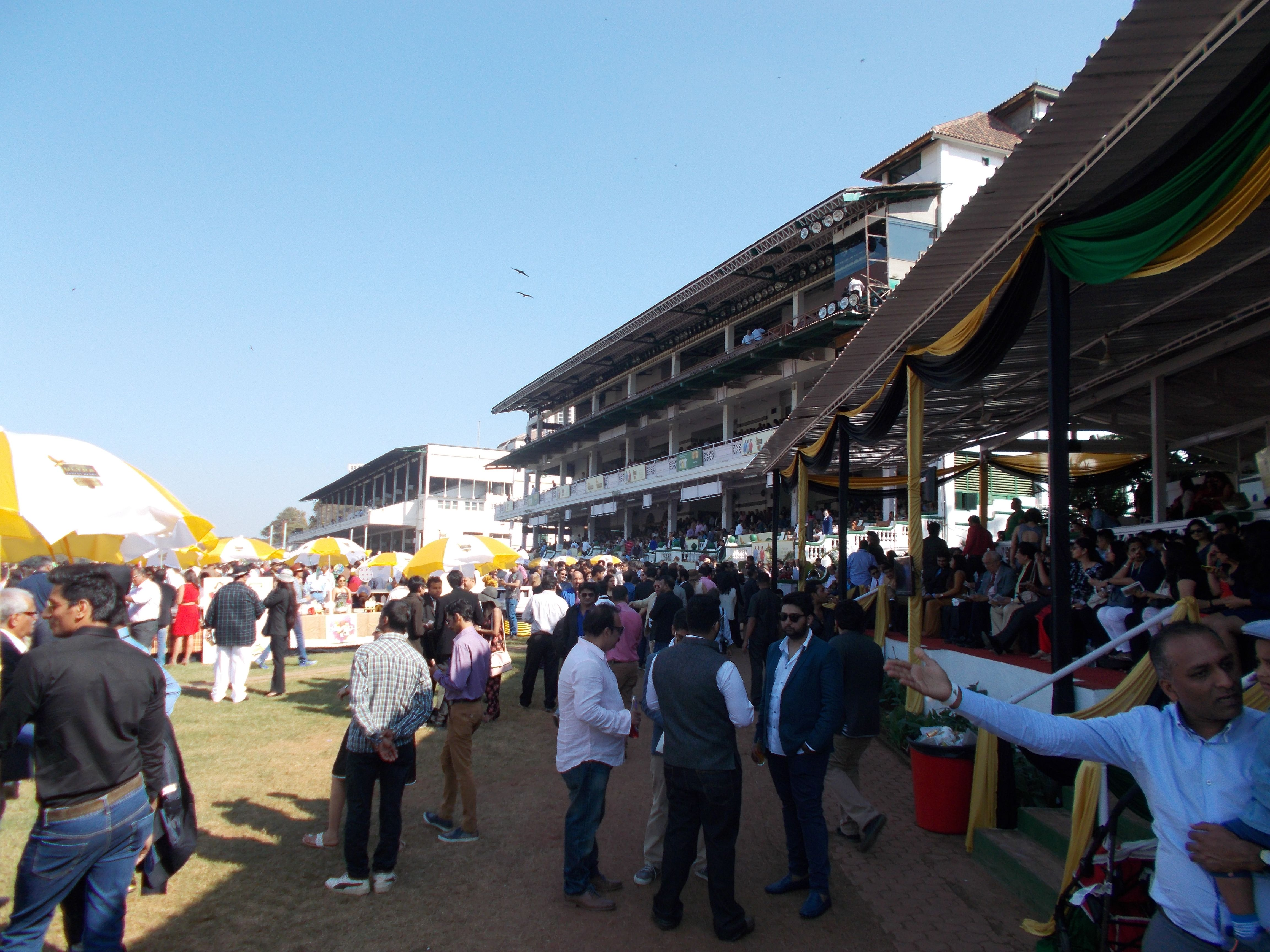 """View of the """"Members"""" and """"First Enclosure"""" grandstands"""