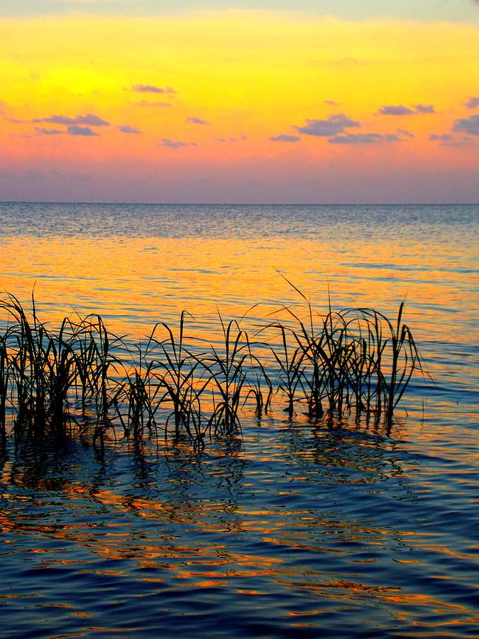 Pastel shoreline