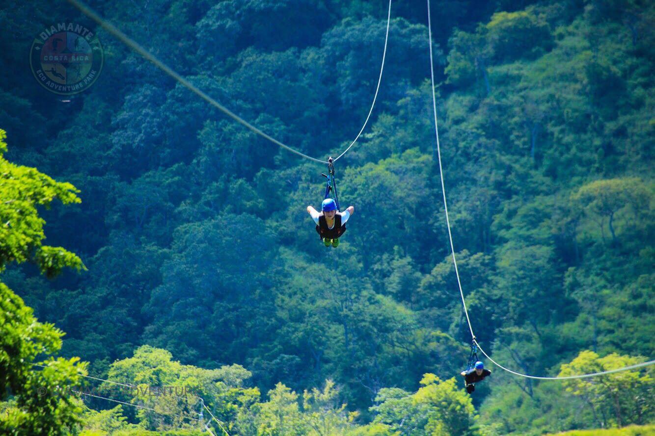 Zip Line In Guanacaste Costa Rica Adventure Park Ziplining Animal Sanctuary