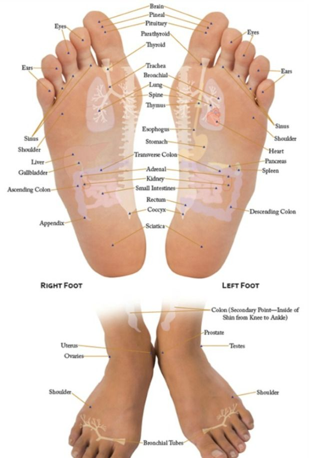 Vita flex feet chart also essential oil recipe for the flu oils pinterest foot rh