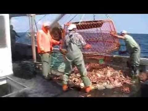atlantic crab fishing