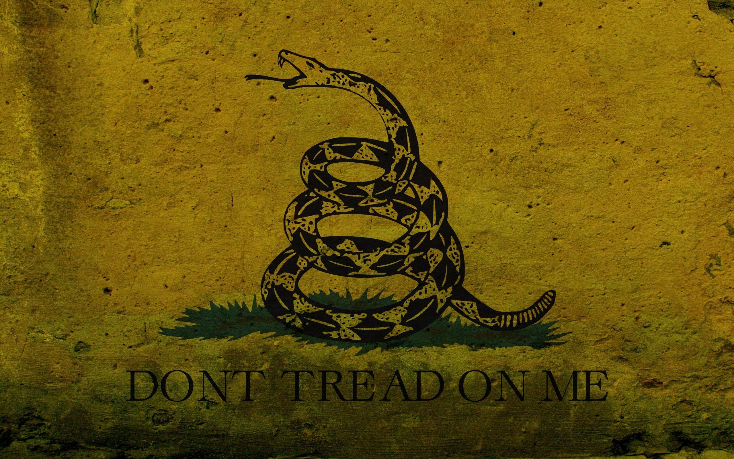 11 Unique Dont Tread On Me Iphone Wallpaper Save In Your Phone Now In 2020 Gadsden Flag American Flag Wallpaper Dont Tread On Me