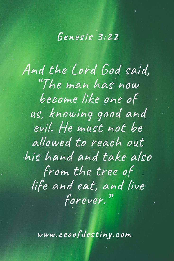 Genesis 322 And the Lord God said The man has now become like one of us knowing good and evil He must not be allowed to reach out his hand and take also from the tree of...