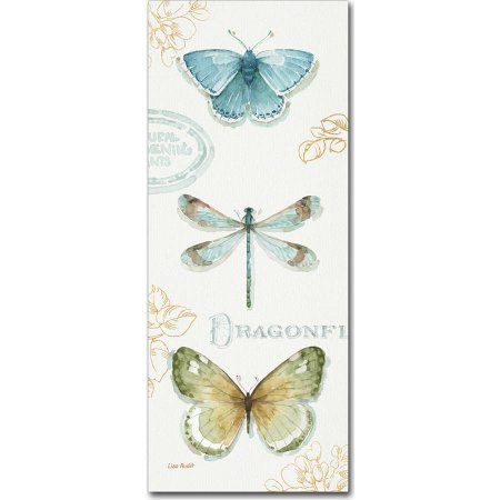 Trademark Fine Art My Greenhouse Butterflies V Canvas Art by Lisa Audit, Multicolor