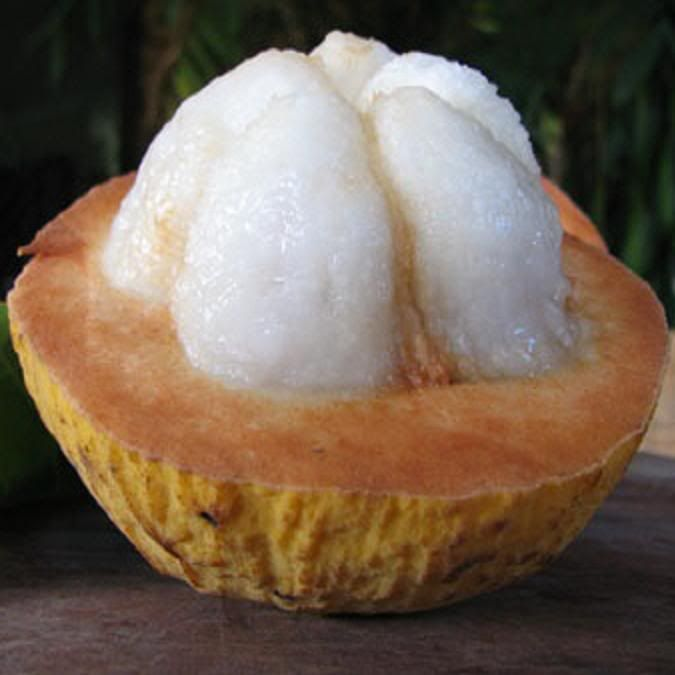 Santol Fruit Philippines | The Yellow Santol fruits are sweet apple sized yellowish fruits are ...