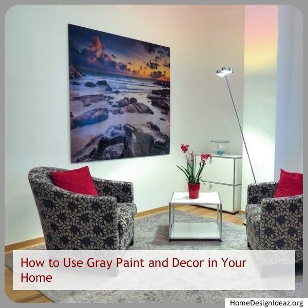 Decorating Ideas Zebra Print Gray Living Room Ideas Sondy Zebra Print Gray Living Roo Decorating Gra