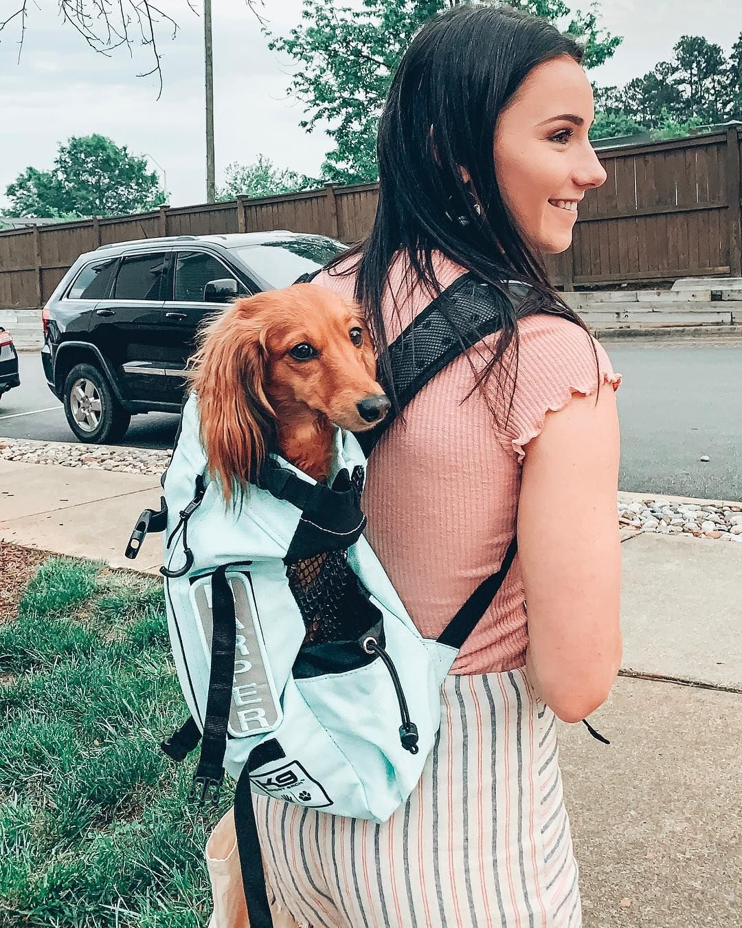 K9 Sport Sack Air Forward Facing Dog Carrier Backpack Free Shipping Chewy Dog Carrier Bag Dog Backpack Carrier Dog Carrier