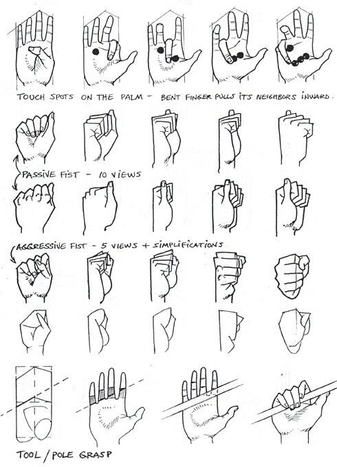 Hand Grip Drawing : drawing, Finger, Positions, Drawing, Tutorial,, Tutorials,, Reference