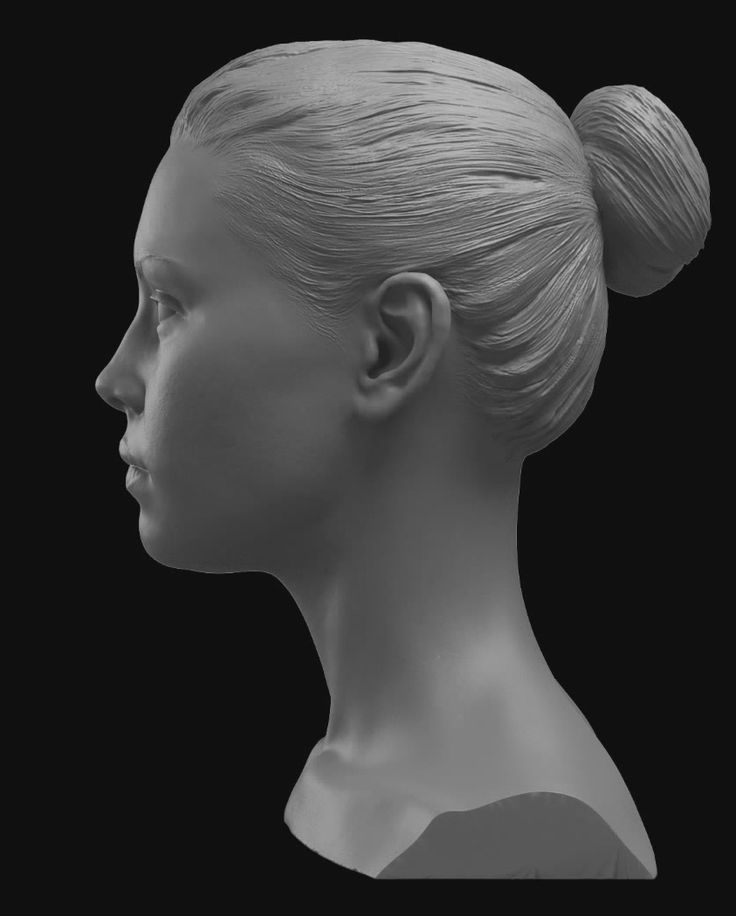 Female Face Profile View Glenn Vilppu Life Drawing Anatomy