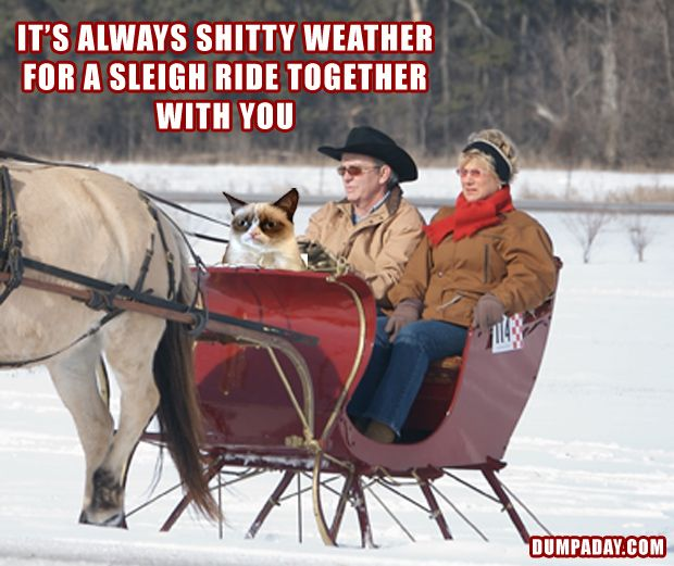 Its Always Lovely Weather For A Sleigh Ride Together With You Angry