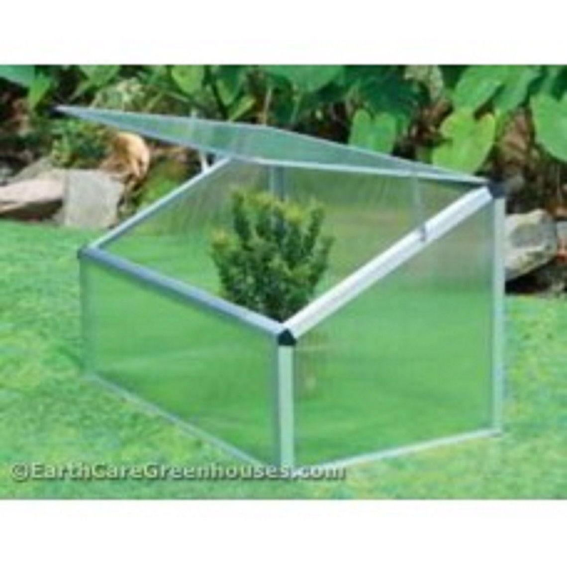 Single Cold Frame Greenhouse | Pinterest | Cold frames, Gardens and ...