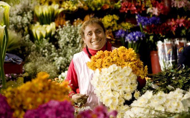 Oportunidad de negocio: Florería