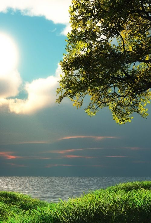 Landscape Avec Images Belle Nature Fond Ecran Nature Amenagement Jardin