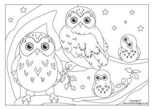 Bird Colouring Pages Owl Coloring Pages Bird Coloring Pages