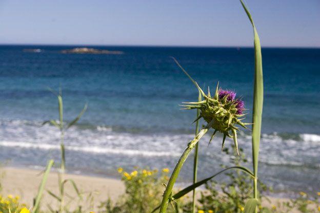Siracusa, la spiaggia della Fanusa