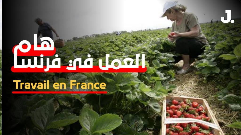 تعتبر فرنسا من أكبر البلدان الأكثر استقطابا للمهاجرين وهذا بسبب سياسته من ناحية القوانين والمساعدات الاجتماعية وخصوصا من دول شمال أفريقيا والمصريين Assistant