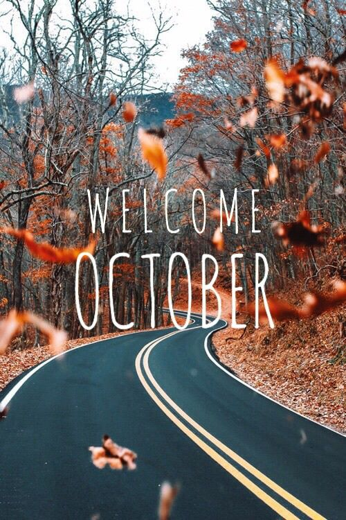 winter summer fall autumn ten spring leaves month season leaf october welcome welcome october #octoberwallpaper